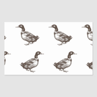 Patos del corral de la colección de Emma Janeway Pegatina Rectangular