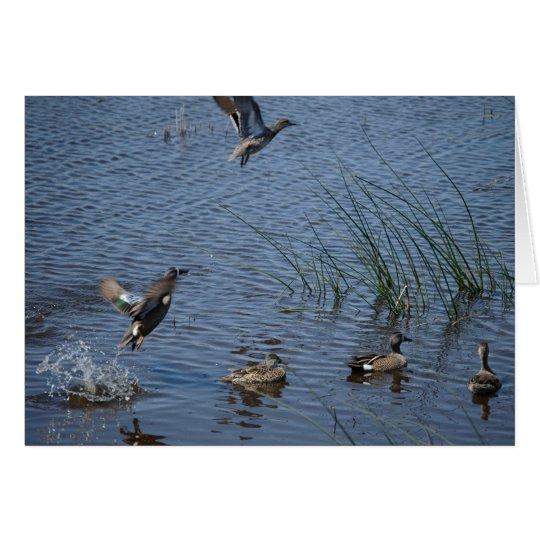 Patos que vuelan el día de padre tarjeta de felicitación