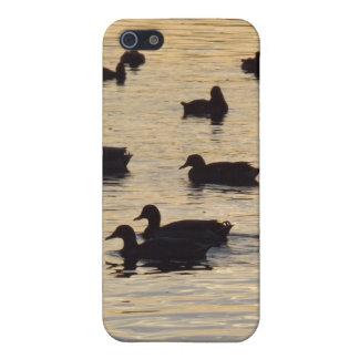 Patos y gansos brillantes de oro de la charca iPhone 5 carcasa
