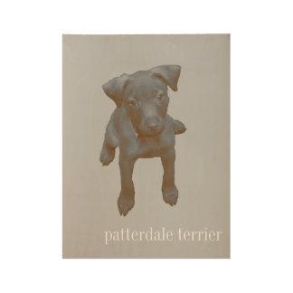 Patterdale Terrier envejeció el poster de