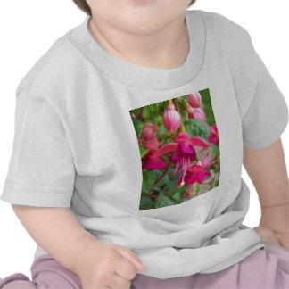Paula fucsia Jane Camisetas