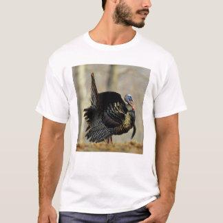 Pavo masculino que apuntala, Illinois Camiseta