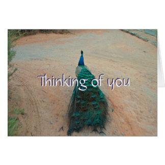 Pavo real ausente del paseo - pensando en usted tarjeta de felicitación