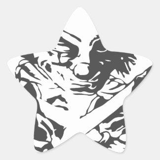 Payaso asustadizo loco pegatina en forma de estrella