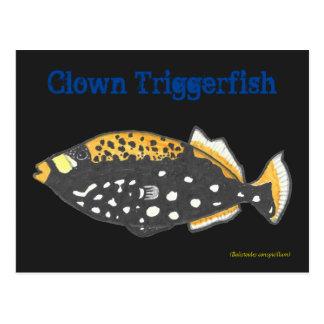 Payaso Triggerfish Postal