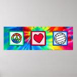 Paz, amor, voleibol posters