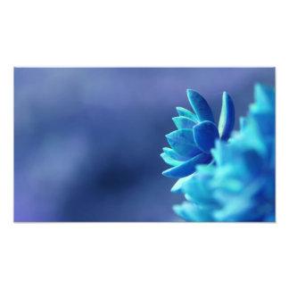 Paz azul foto