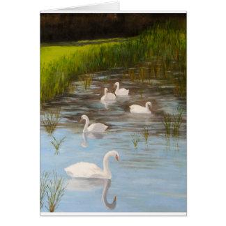 Paz de la serenidad de los cisnes de la tarjeta en