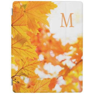 Paz del otoño cubierta de iPad