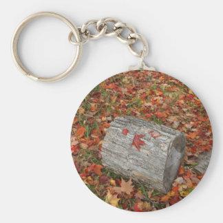 Pedazo de madera en hojas de la caída llavero redondo tipo chapa