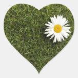Pedazo en forma de corazón de césped con la flor g pegatinas de corazon