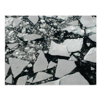 Pedazos flotantes de hielo ártico quebrado postal