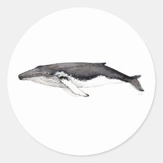Pegatina ballena jorobada