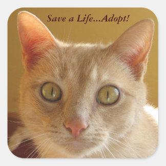 Pegatina Cuadrada ¡Ahorre una vida… adoptan!