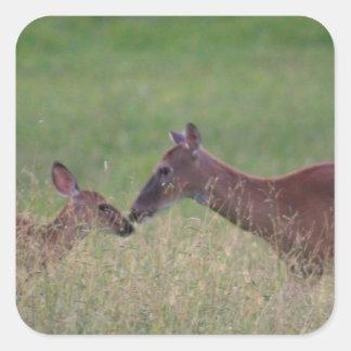 Pegatina Cuadrada Ámele los ciervos