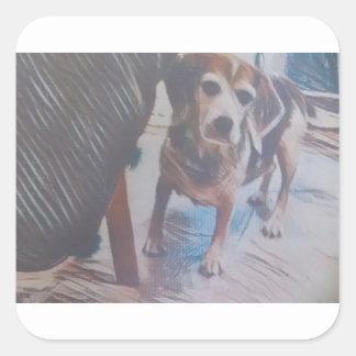 Pegatina Cuadrada Beagle curioso