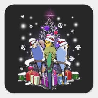 Pegatina Cuadrada Budgerigars con el navidad regalo y copos de nieve