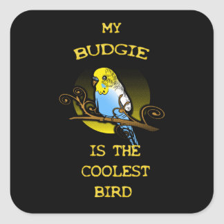 Pegatina Cuadrada Budgie es el pájaro más fresco