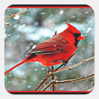 Pegatina Cuadrada Cardenal rojo en la nieve