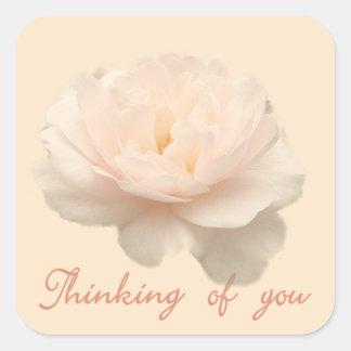 Pegatina Cuadrada Color de rosa blanco y rosado