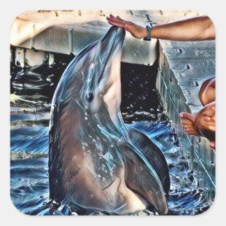 Pegatina Cuadrada Delfín