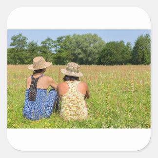 Pegatina Cuadrada Dos amigos que se sientan junto en meadow.JPG