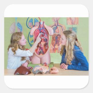 Pegatina Cuadrada Dos estudiantes que aprenden el cuerpo humano