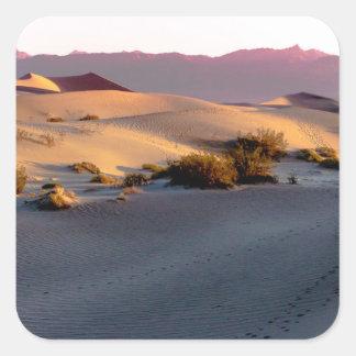 Pegatina Cuadrada Dunas de arena planas del Mesquite Death Valley