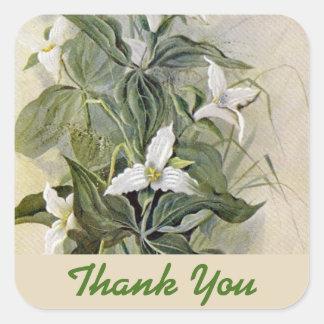 Pegatina Cuadrada El Wildflower botánico le agradece verde del