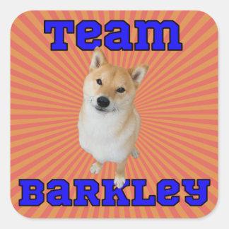 Pegatina Cuadrada Equipo Barkley - pegatinas cuadrados, brillantes