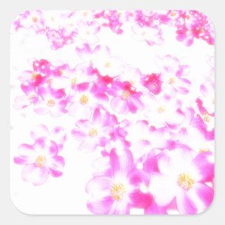 Pegatina Cuadrada Flor rosado del Dogwood