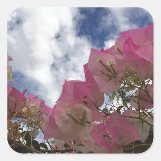 Pegatina Cuadrada flores rosadas contra un cielo azul