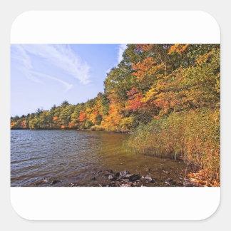 Pegatina Cuadrada Follaje de otoño en la charca del punto