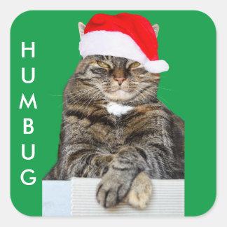 Pegatina Cuadrada Foto del embaucamiento del gato del navidad con el