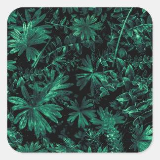 Pegatina Cuadrada Foto oscura de la flora