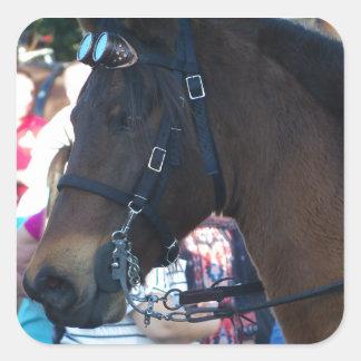Pegatina Cuadrada Gafas que llevan del caballo árabe de Brown oscuro