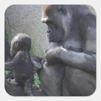 Pegatina Cuadrada Gorila
