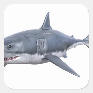 Pegatina Cuadrada gran tiburón blanco que nada a la derecha
