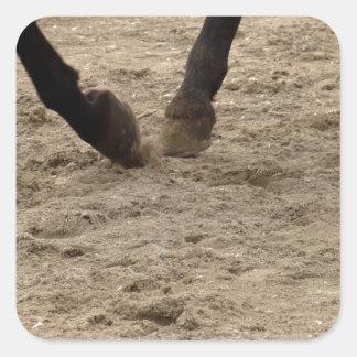 Pegatina Cuadrada Horse hooves