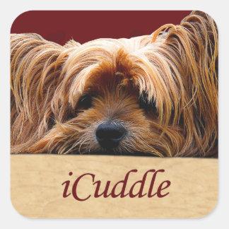 Pegatina Cuadrada iCuddle Yorkshire Terrier