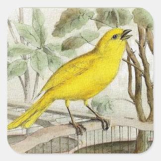 Pegatina Cuadrada Ilustracion amarillo del vintage