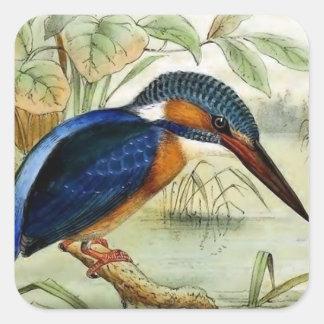 Pegatina Cuadrada Ilustracion del pájaro del vintage del martín