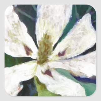 Pegatina Cuadrada Imagen de la magnolia de Ashe