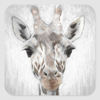 Pegatina Cuadrada La jirafa majestuosa retrató de muchos productos