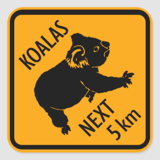 Pegatina Cuadrada Muestra de Australia del oso de koala (paquete de