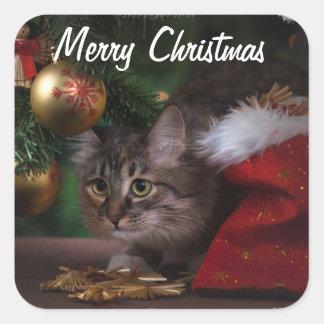 Pegatina Cuadrada Navidad felino