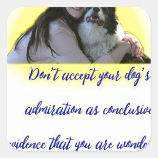 Pegatina Cuadrada No acepte la admiración de su perro