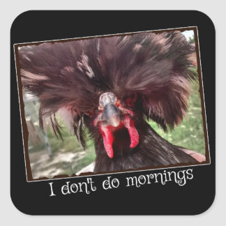 Pegatina Cuadrada No hago mañanas con el pollo polaco Weezy
