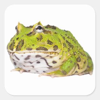 Pegatina Cuadrada Pegatinas verdes de la rana de Pacman