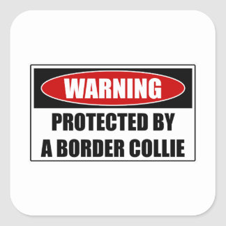 Pegatina Cuadrada Protegido por un border collie